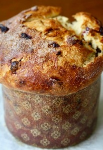 Jeff and Zoë's panettone