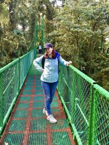 Hanging bridges like this one let you view the cloud forest from up high.