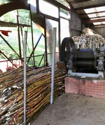 Milled ugar cane gets recycled into paper.