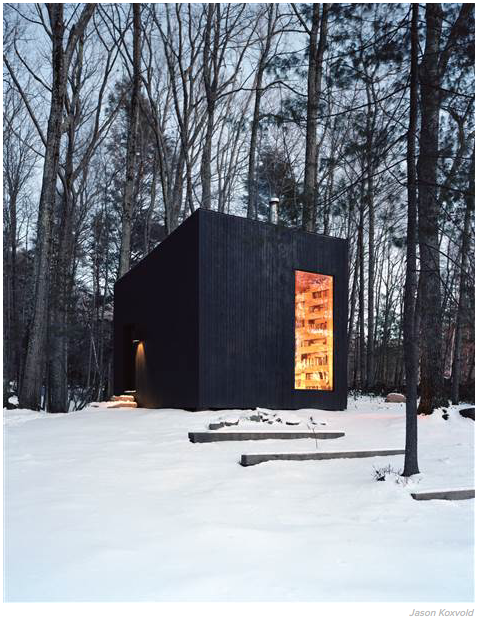 Private Library in the Woods