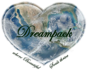 This post by Patty of DreamPack.org