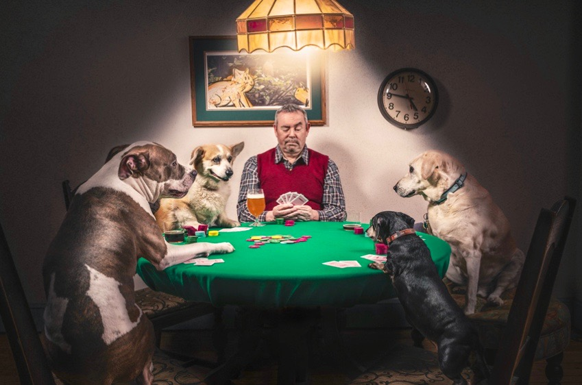 Man and Dogs Playing Cards by Ryan McGuire of Gratisography
