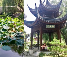 The Huntington Chinese garden and da-Al under pagoda