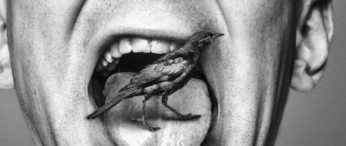 Cropped black and white photo of man with a bird in his mouth by Ryan McGuire of Gratisography