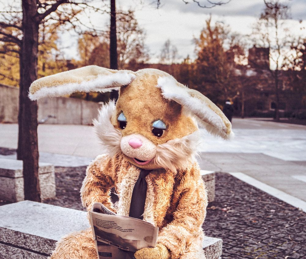 Bunny rabbit outfitted person reads paper.