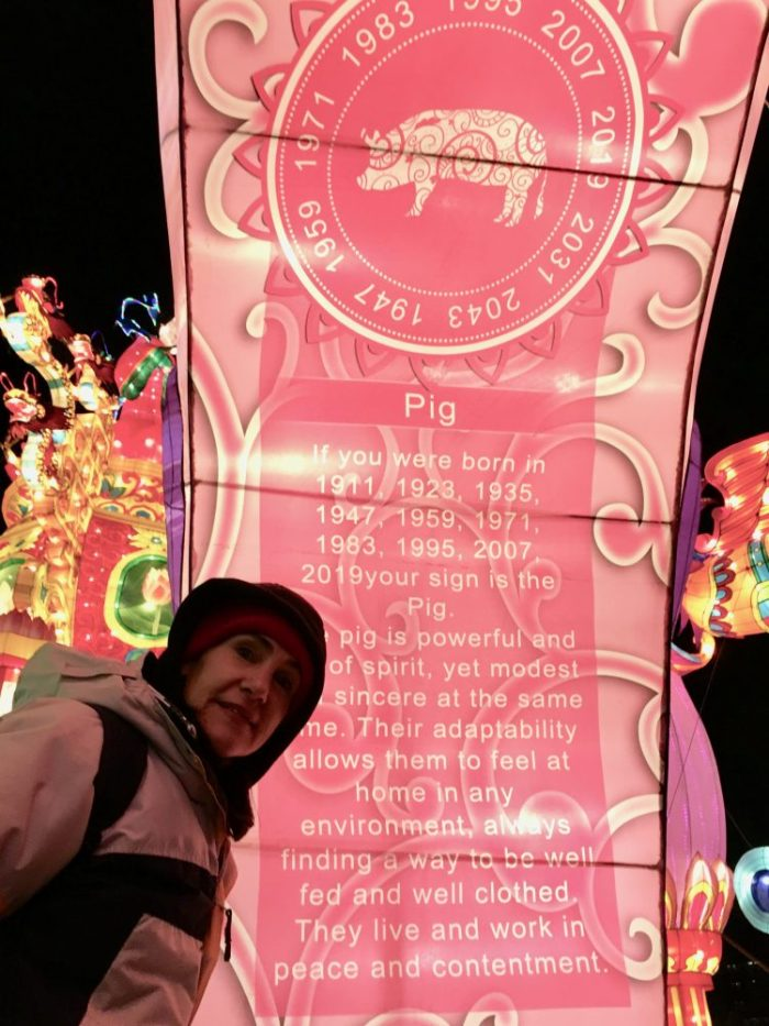 da-AL in front of lighted Chinese astrology banner
