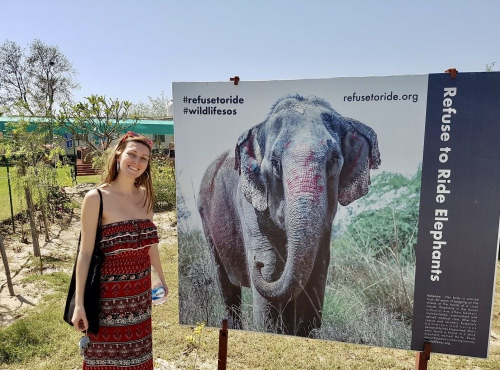 Blogger/traveler Chelsea was profoundly moved by her visit to India.