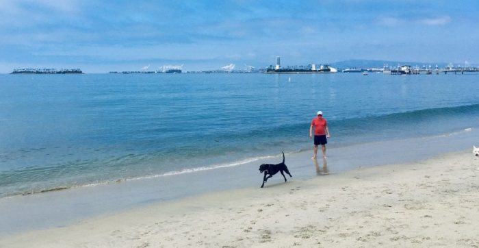 K-D runs along beach with Khashayar in tow.
