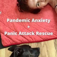 Pandemic Anxiety by da-AL & Panic Attack Rescue by Caz