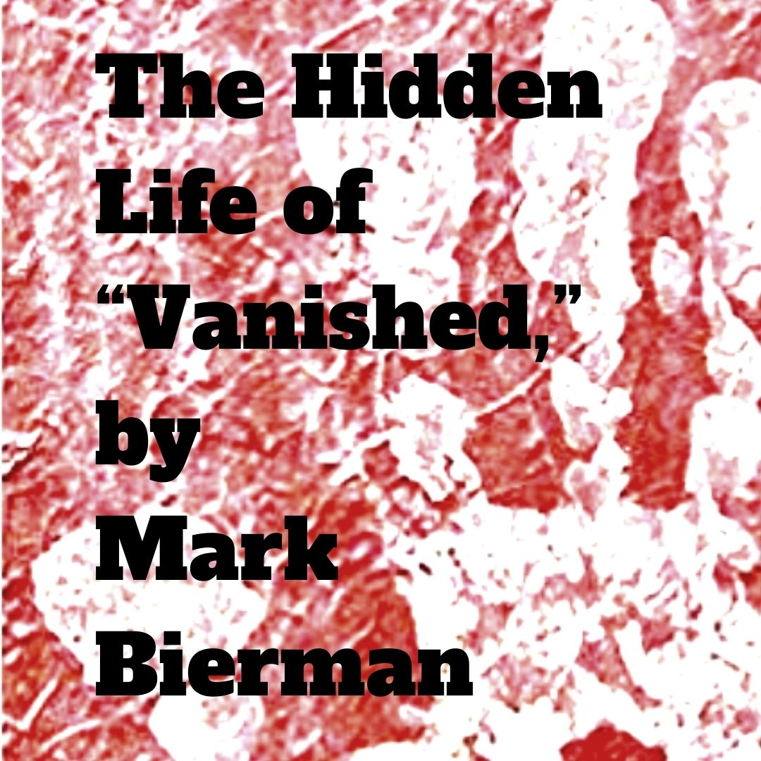 """Close up of """"Vanished,"""" cover, an action/thriller by Mark Bierman."""