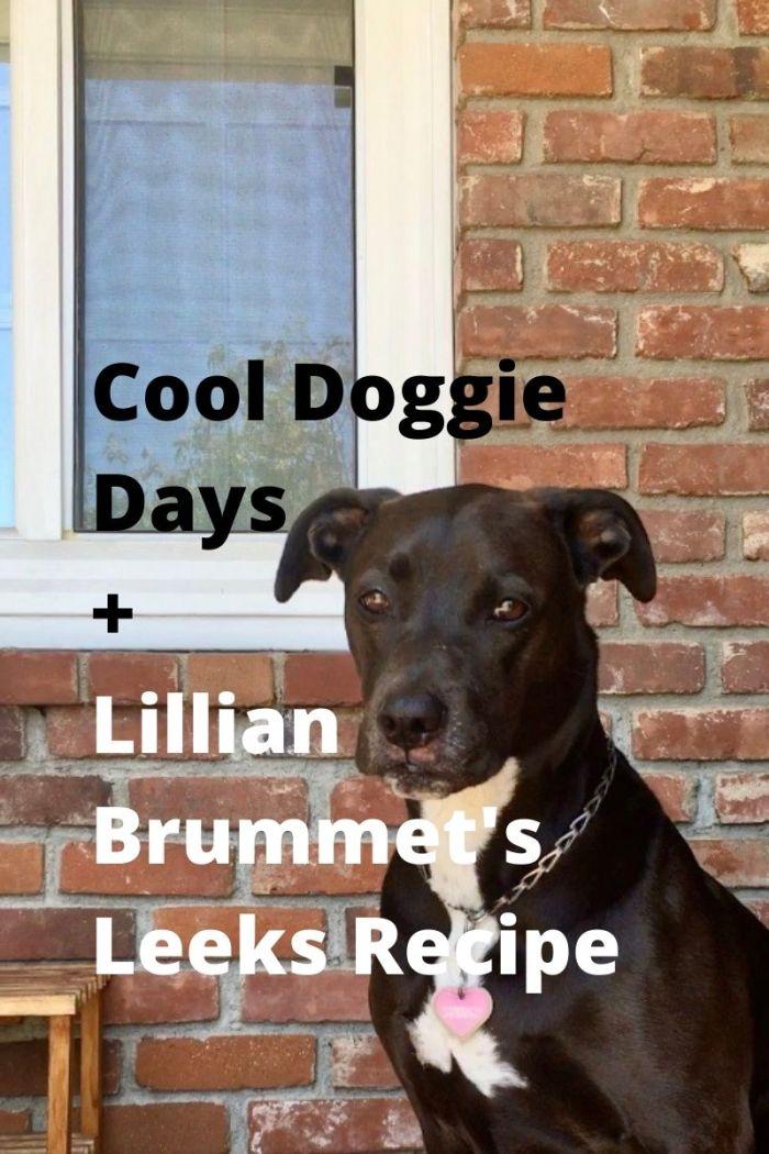 K-D doggie is a singer.