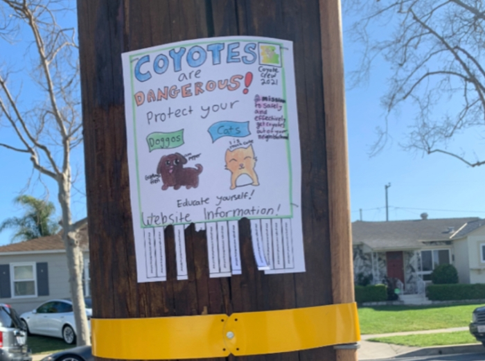 Photo of neighborhood poster by local Girl Scouts.