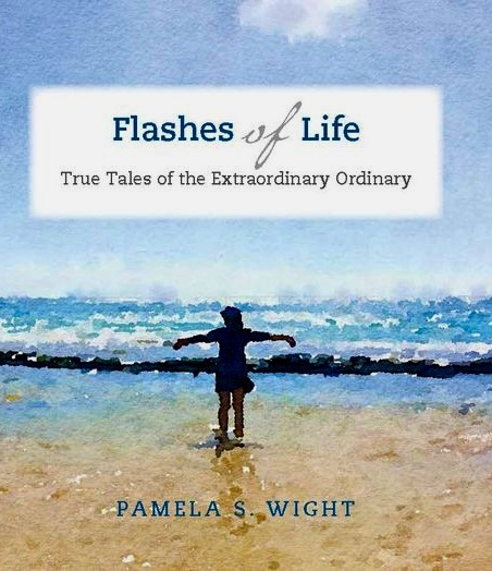 """Cover of """"Flashes of Life,"""" by Pamela S. Wight."""